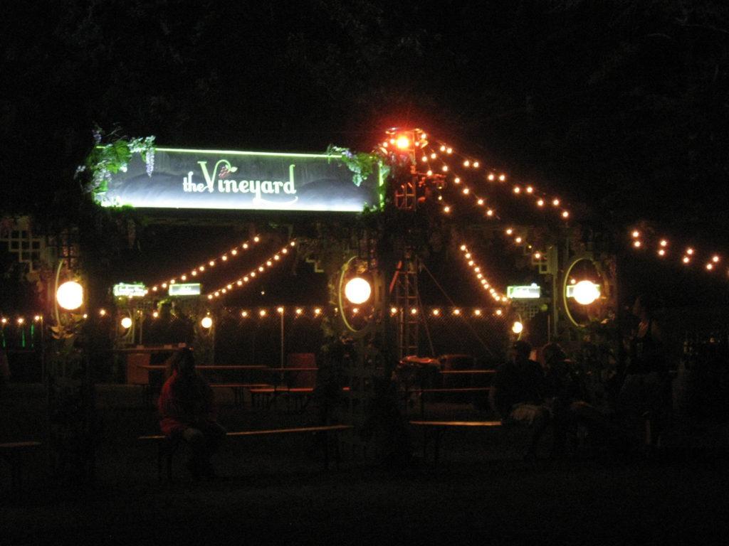 the vineyard at night 1-300